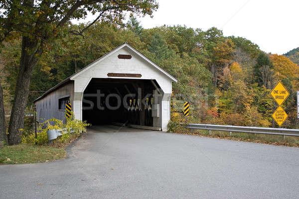 Covered Bridge Stock photo © ArenaCreative