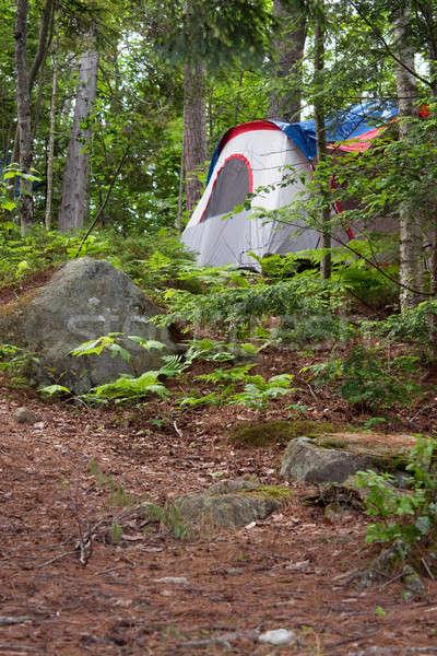 Orman çadır kamp kamp doğa Stok fotoğraf © ArenaCreative