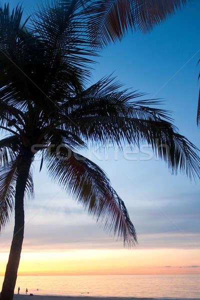 Puerto Rico Carolina Sunset Stock photo © arenacreative