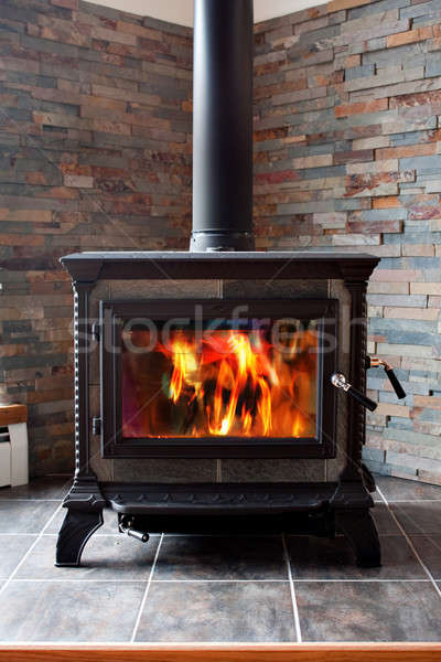 Burning Cast Iron Wood Stove Heating Stock photo © ArenaCreative