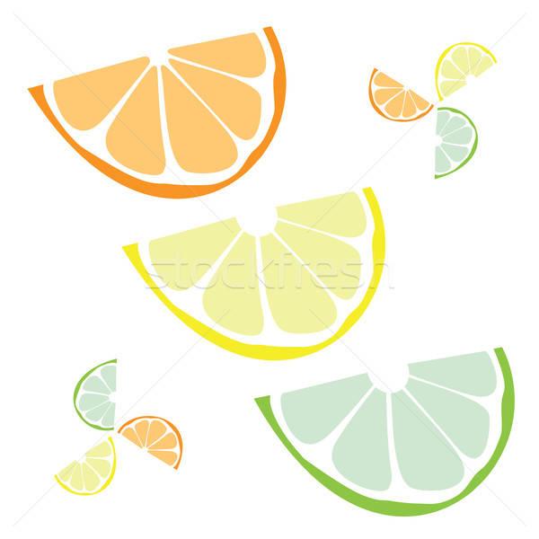Citrus Slices Vector Stock photo © ArenaCreative