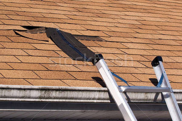 Damaged Roof Shingles Repair Stock photo © ArenaCreative