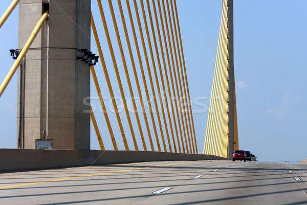 Altın kablo Delaware köprü altın ABD Stok fotoğraf © ArenaCreative