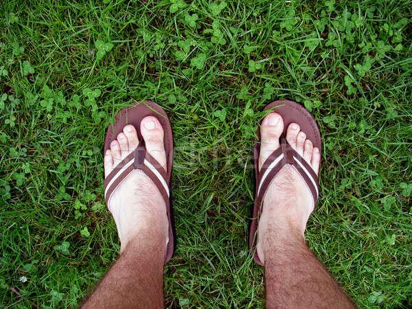 Stóp trawy sandały spaceru świeże zielona trawa Zdjęcia stock © ArenaCreative