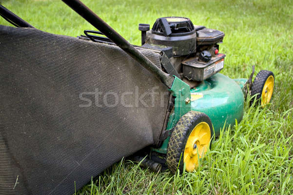 Stylu nowoczesne cięcie trawy Zdjęcia stock © ArenaCreative