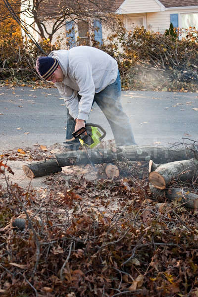 Stock photo: Man Cuts Tree Limbs with a Chainsaw