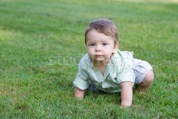 Aranyos baba kúszás fiatal zöld fű tavasz Stock fotó © ArenaCreative