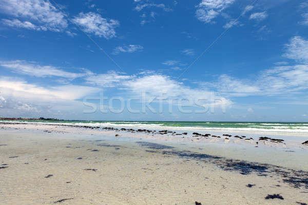 Chiave spiaggia Florida golfo costa acqua Foto d'archivio © ArenaCreative