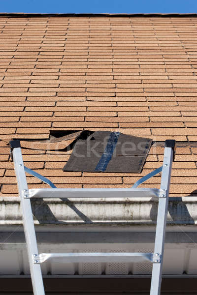 Roofing Repair Stock photo © ArenaCreative