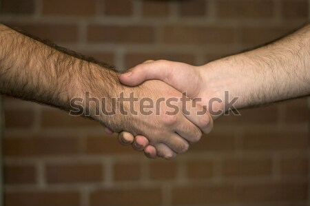 Business Deal Stock photo © ArenaCreative