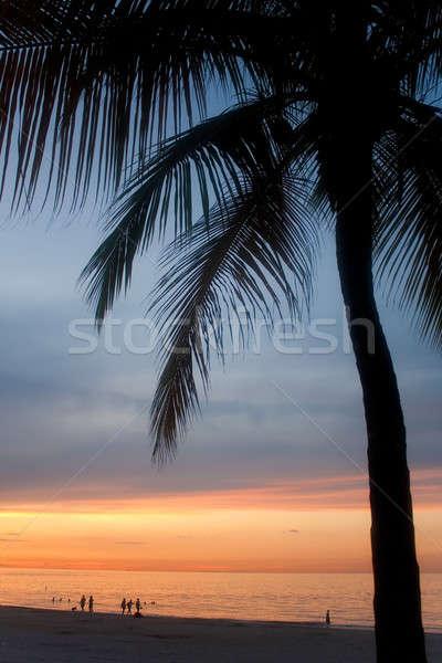 Puerto Rico zonsondergang mooie san juan boom Stockfoto © ArenaCreative