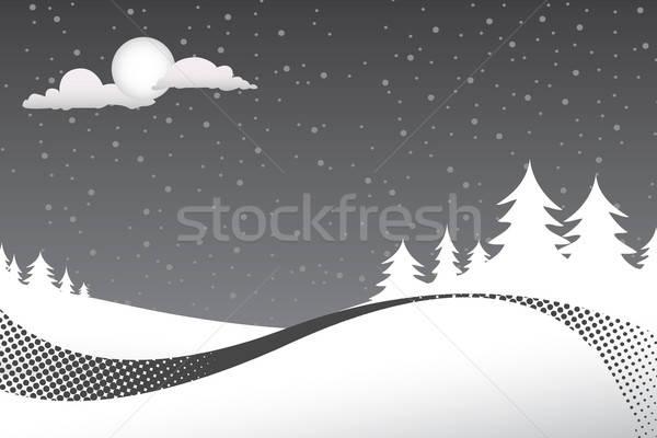 Winter Night Scene Stock photo © ArenaCreative
