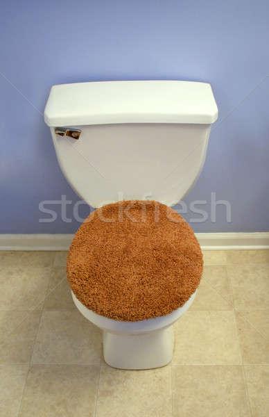 トイレ 現代 見える ファジー オレンジ 座席 ストックフォト © ArenaCreative