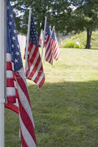 Stock photo: Row of Flags