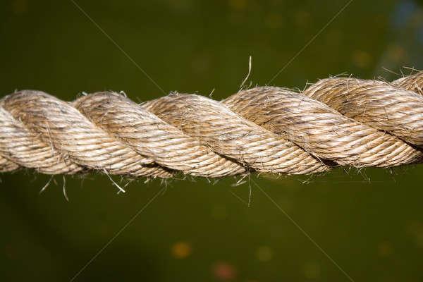 Foto stock: Corda · pormenor · sólido · verde · madeira
