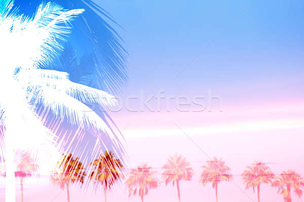 Tropical Palm Trees Collage Stock photo © ArenaCreative