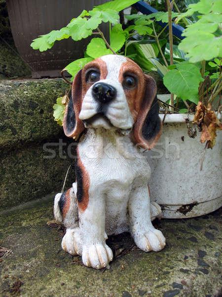 Cute beagle piccolo cane giardino impianti Foto d'archivio © ArenaCreative