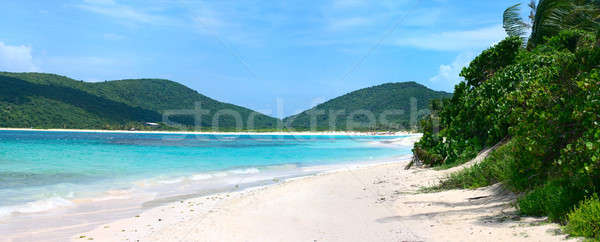 Flamenco tengerpart káprázatos fehér homok puerto rico-i sziget Stock fotó © ArenaCreative