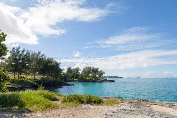 Bermuda Coast Rock Formations Stock photo © arenacreative