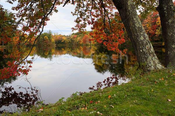 Yeni İngiltere yeşillik sonbahar sahne Stok fotoğraf © ArenaCreative