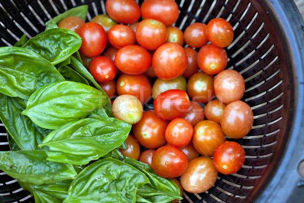 Vine Ripened Grape Tomatoes and Italian Basil Stock photo © ArenaCreative