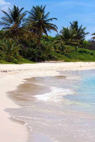 Wit zand Puerto Rico strand adembenemend flamenco Stockfoto © ArenaCreative