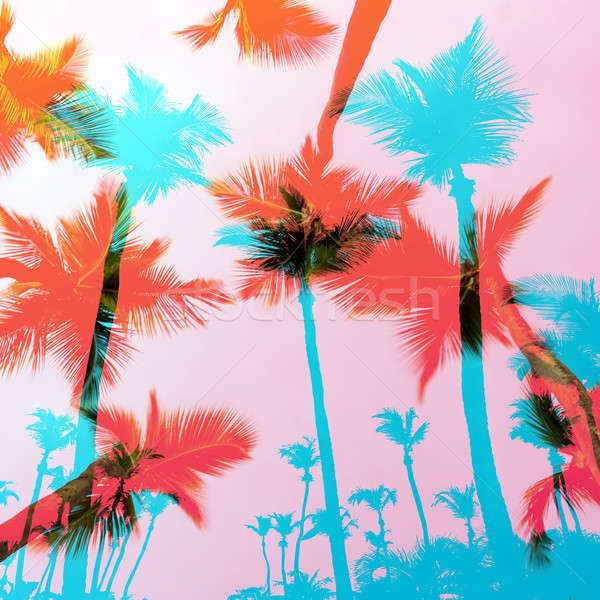 Exotic Palm Trees Montage Stock photo © ArenaCreative