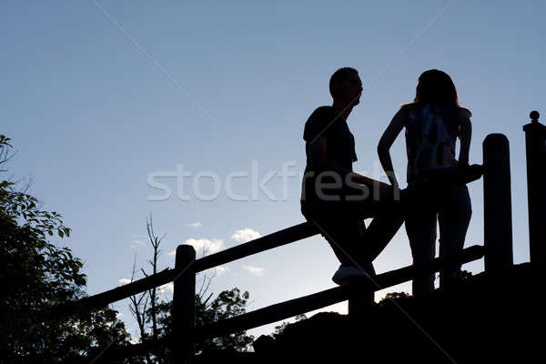 Couple Silhouette Stock photo © ArenaCreative