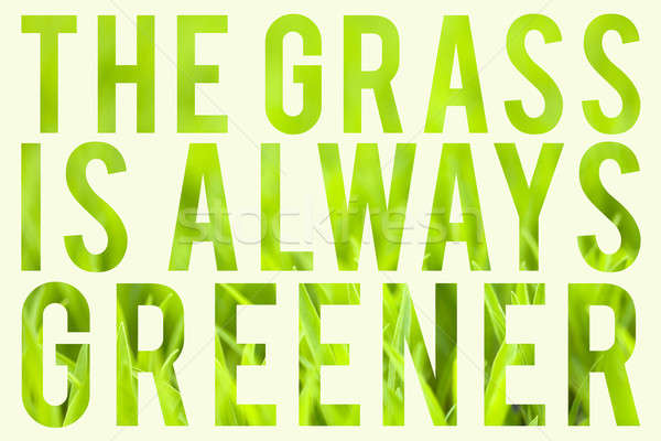 Grass is Always Greener Stock photo © arenacreative