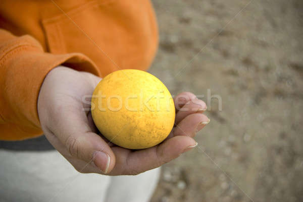 golden egg Stock photo © ArenaCreative
