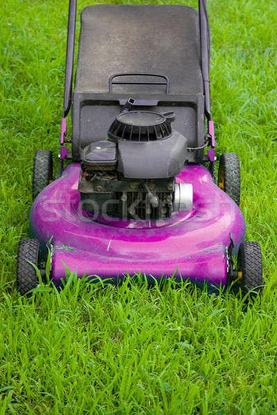 Pink Lawn Mower Stock photo © ArenaCreative