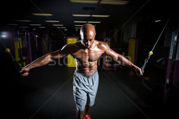 Cable Weight Training Exercises Stock photo © arenacreative