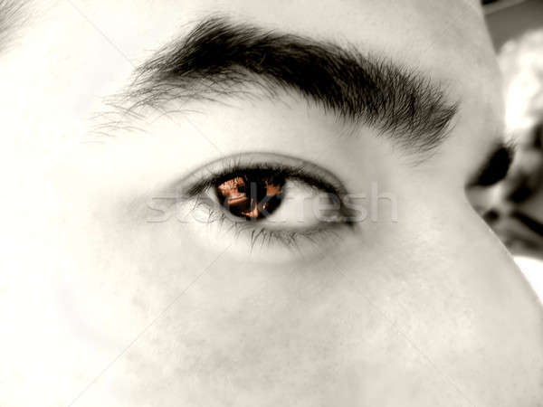 brown eye macro Stock photo © ArenaCreative