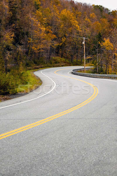 New England Road Stock photo © ArenaCreative