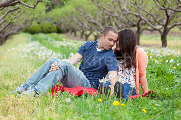 Affectueux couple printemps jeunes heureux Photo stock © ArenaCreative