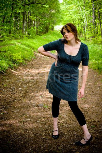 Path Through the Woods Stock photo © ArenaCreative