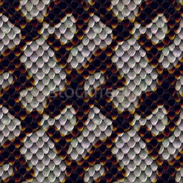Snake Skin Texture Stock photo © ArenaCreative