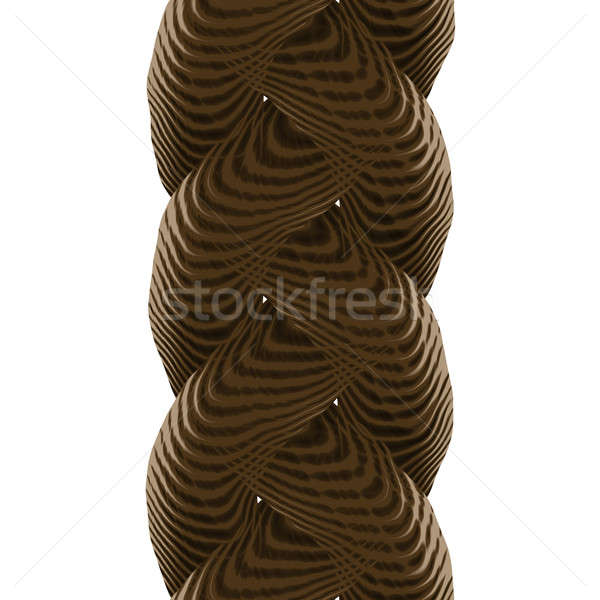 Braided Rope Stock photo © ArenaCreative