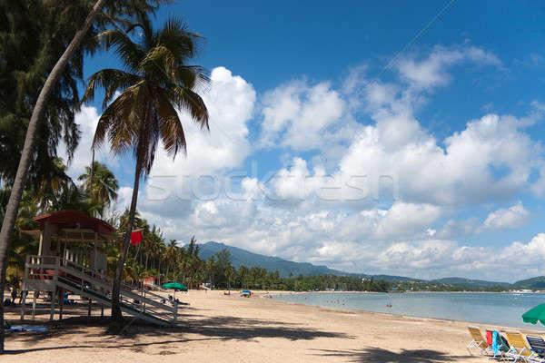 Strand Puerto Rico mooie groot eiland Stockfoto © ArenaCreative