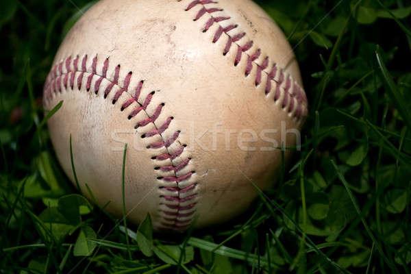 Old Baseball in the Grass Stock photo © ArenaCreative