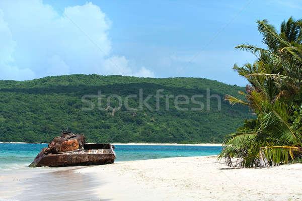 Puerto Rico Beach Tank Stock photo © ArenaCreative