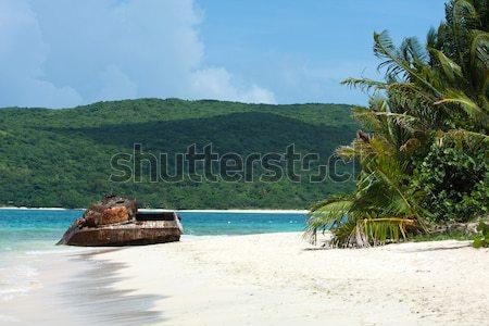 Portoriko plaj tank eski paslı Stok fotoğraf © ArenaCreative