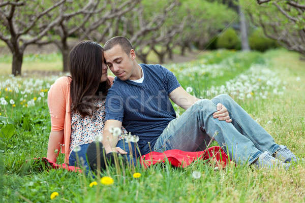 Affectionate Couple Together on Picnic Blanket Stock photo © ArenaCreative