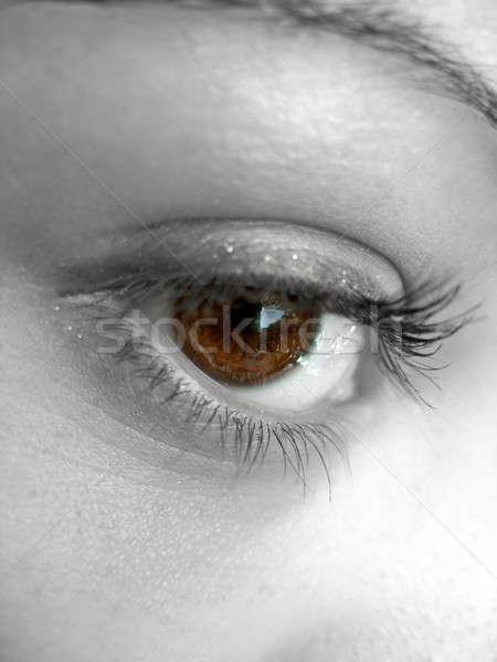 Pretty Brown Eye Stock photo © ArenaCreative
