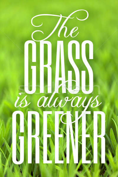 Stock photo: The Grass is Always Greener