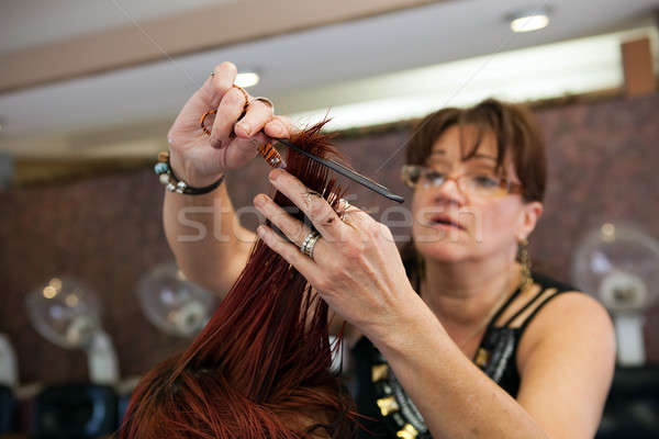 A New Look at the Salon Stock photo © ArenaCreative