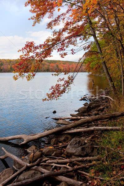 New England Fall Foliage Stock photo © ArenaCreative