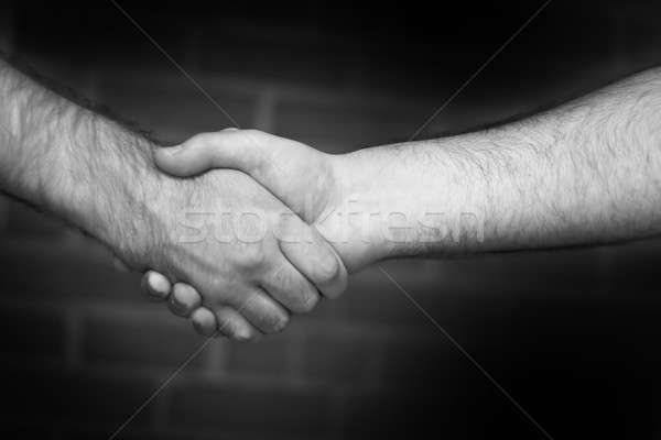 Firm Handshake Stock photo © ArenaCreative