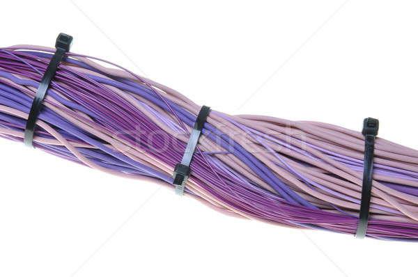Violeta cables cable aislado blanco ordenador Foto stock © Arezzoni