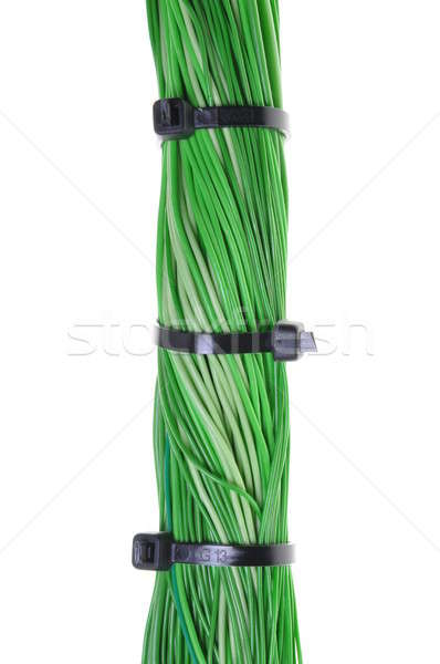 Bundles of computer cables with cable ties Stock photo © Arezzoni